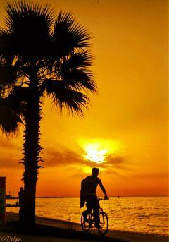 sunset sunsetcity sunside suncolours landacape