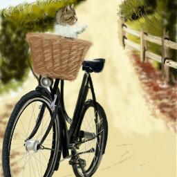 wdpbike cycle petsandanimals cat nature