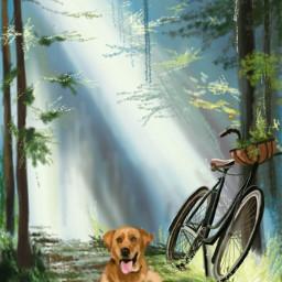 wdpbike cycle dog petsandanimals nature