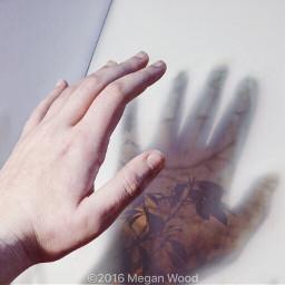 freetoedit hands sunset shadow whitebackground