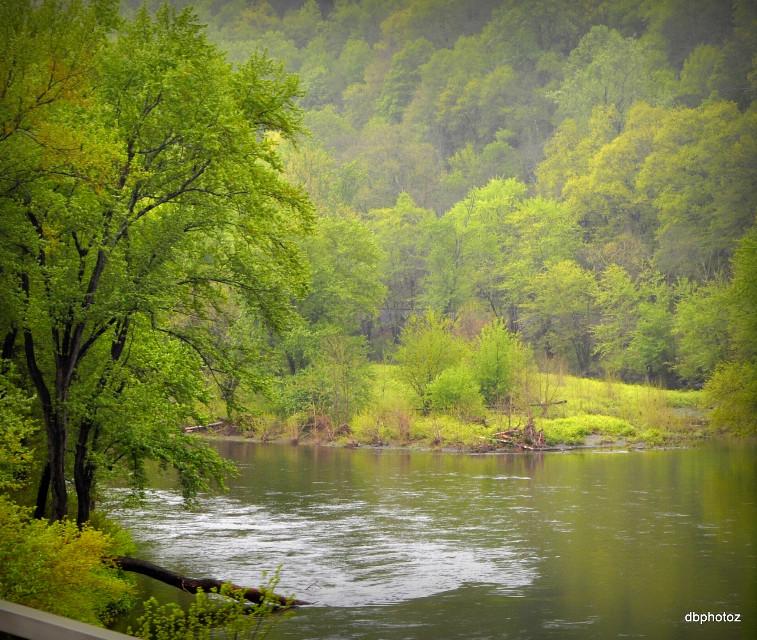 #green  #river #beautiful