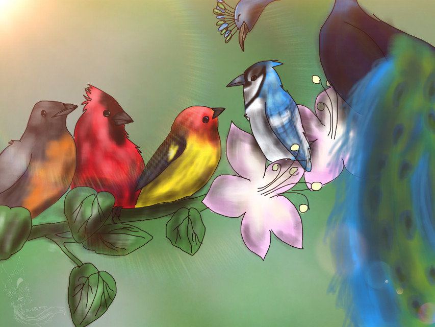 Song Birds   This is the last of the gifts I made for my teachers as the last day of school (for me) is June 8th This one is for my Band teacher who's favorite animal are Song Birds.  #deceasedboundmon #art #arts #draw #drawn #birds #bird #songbirds #gift