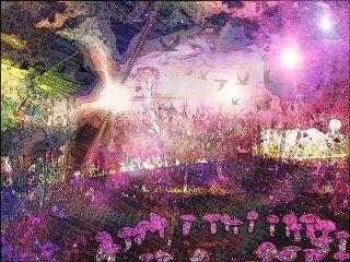 art nature music night mushrooms