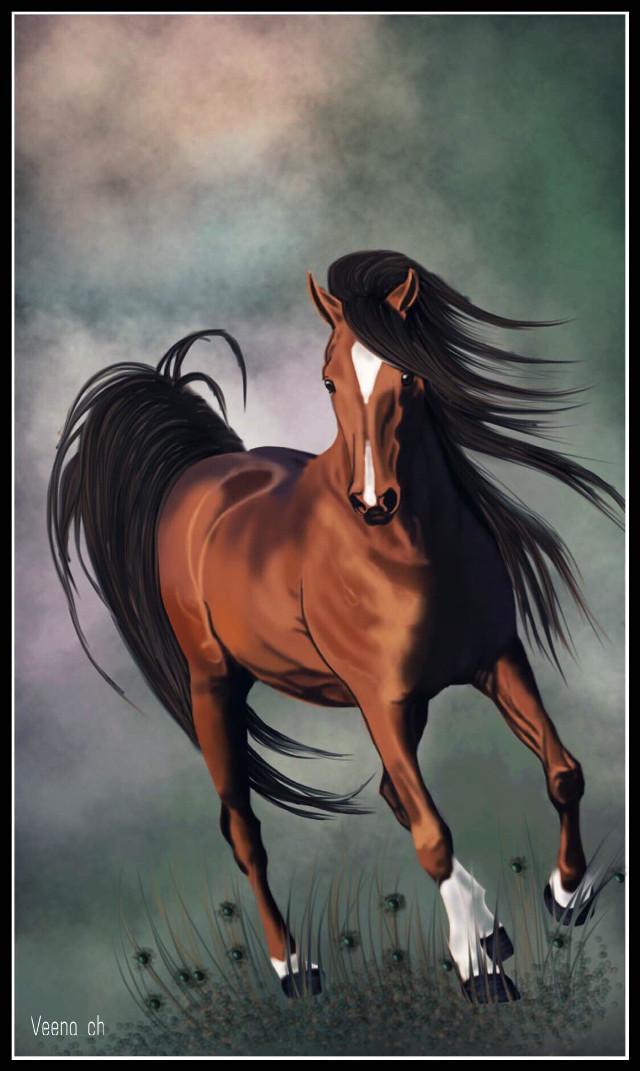 #wdpwindy #drawing #mysrawing #art #horse #petsandanimals   Web reference used