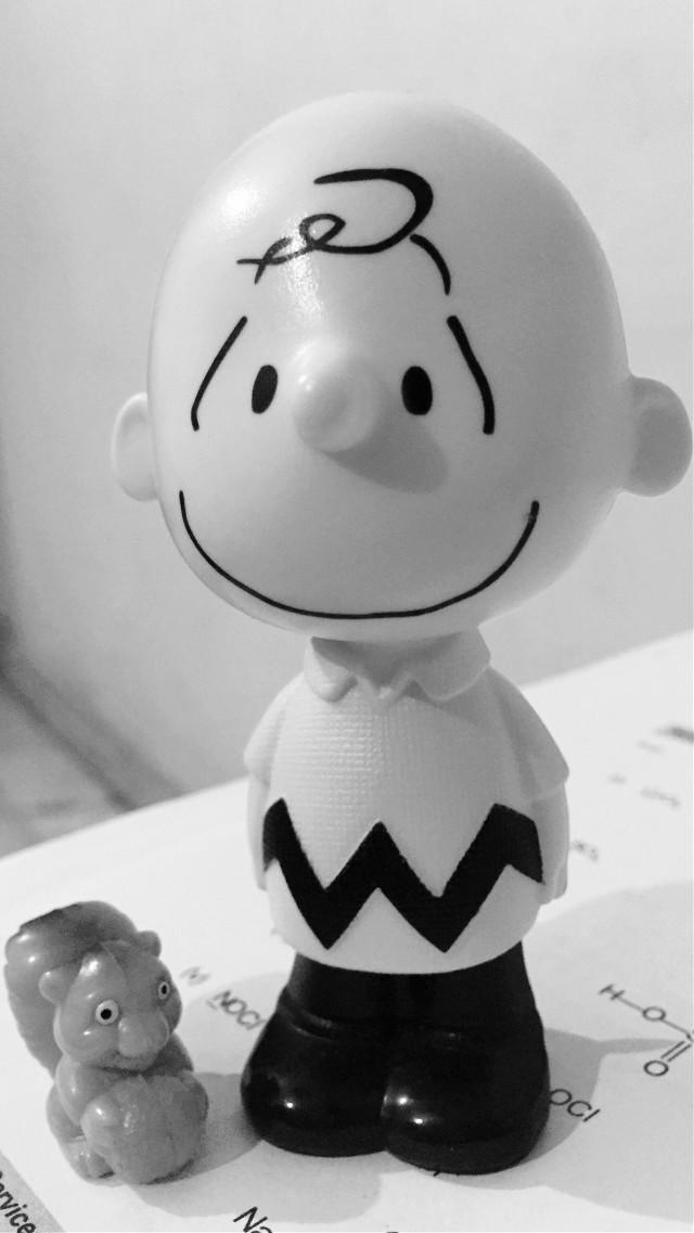 #FreeToEdit  #peanuts #grey #doitforyou