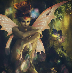 fantasy fairy modified
