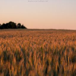 minimalism landscapephotography freetoedit