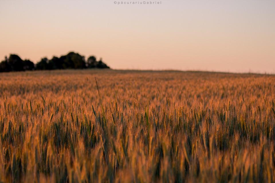 #minimalism #landscapephotography #freetoedit