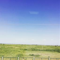 grassland grasslands green bluesky travel