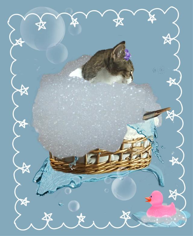 SPLISH SPLASH I was taking a bath long about a Caturday night! #FreeToEdit