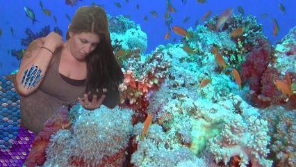 freetoedit underthesea mermaid cute colorful