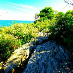 explore exploring exploration colorful nature freetoedit