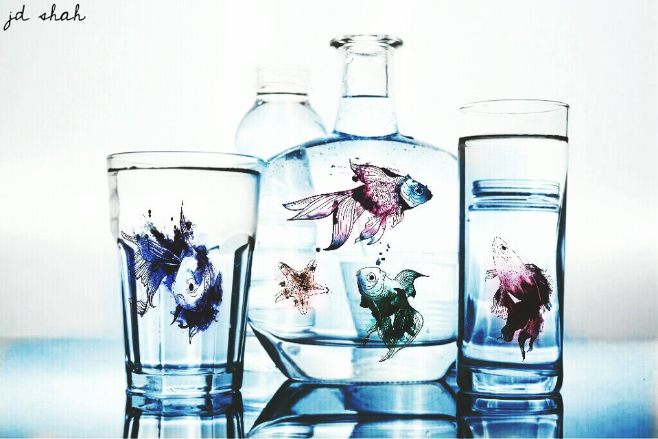 Op:-  @jessica-pa #addcolor #edited #fishes