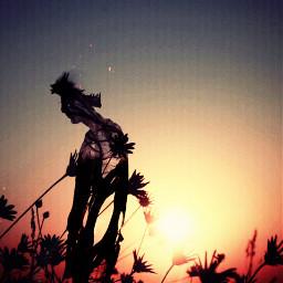 art artwork surreal surrealism sunset