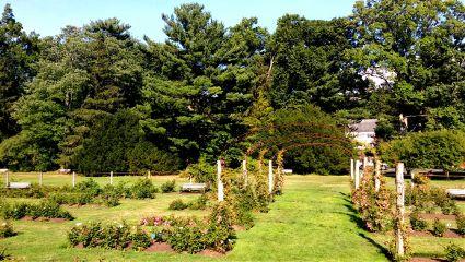 elizabethpark garden adjusttool ruleofthirds