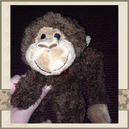 monkey toy toyphotograhy edit animal