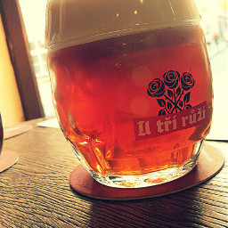 beer viennared red pub utřirůži